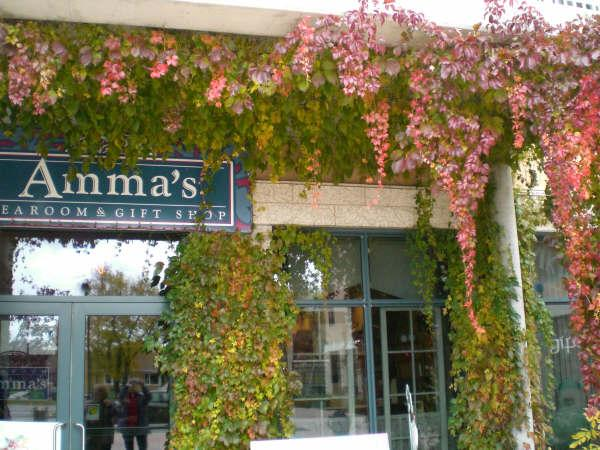 Amma's Tearoom & Gift Shop